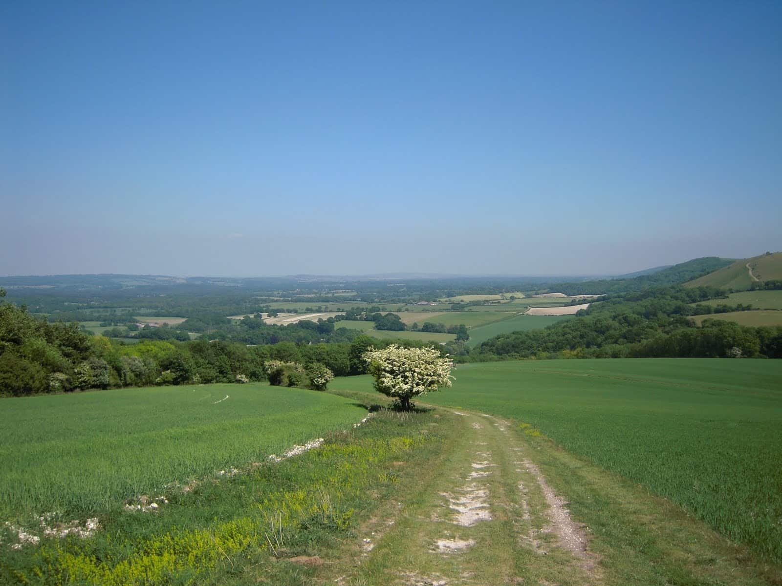 South Downs Way Walking holidays