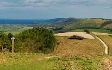 the-South-Downs-Way, walks in south downs