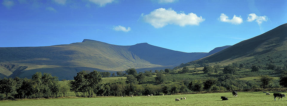 Pen y FanBrecon Beacons National ParkScenery