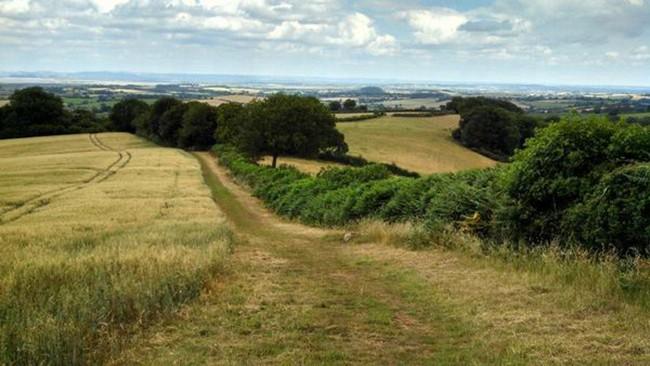 Celtic Trails Walking Holidays