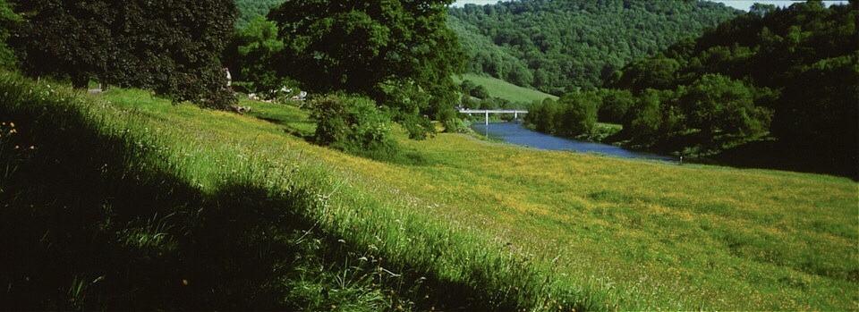 Walking-Wye-Valley-Walk