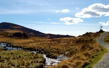 Marshland on the Kerry Way