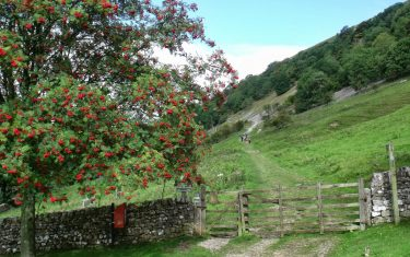 Buckden Rake, Yockenthwaite and the Wharfe on the Dales Way Walking Holiday