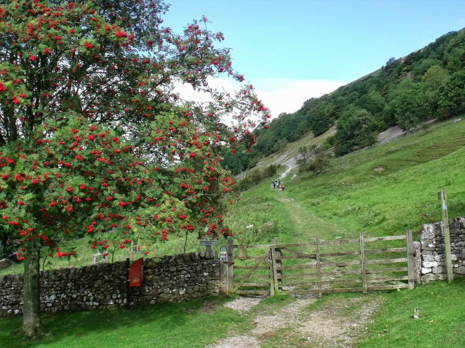 Buckden Rake, Yockenthwaite and the Wharfe on the Dales Way Walking Holiday