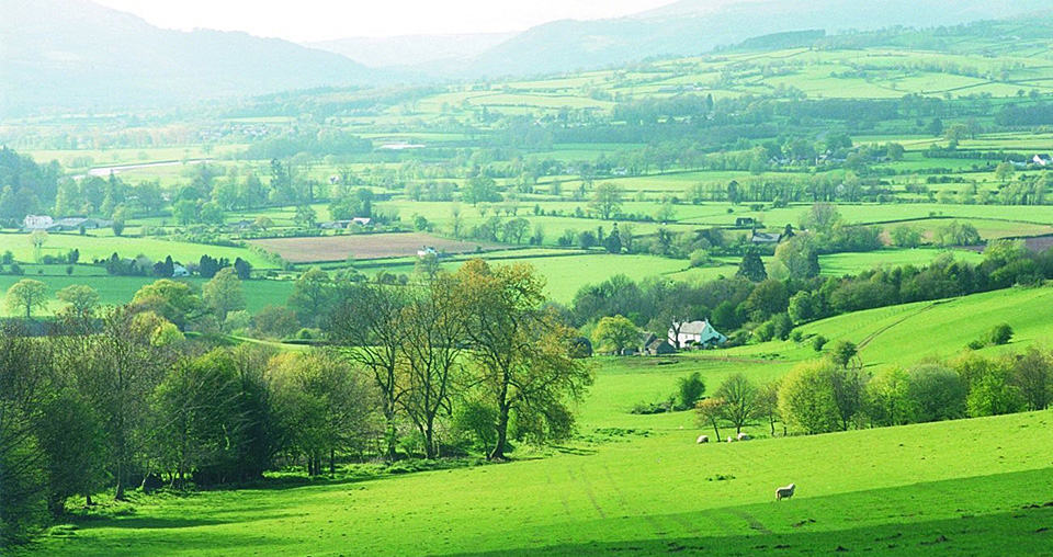 Walking Holidays Offas Dyke Path Herefordshire