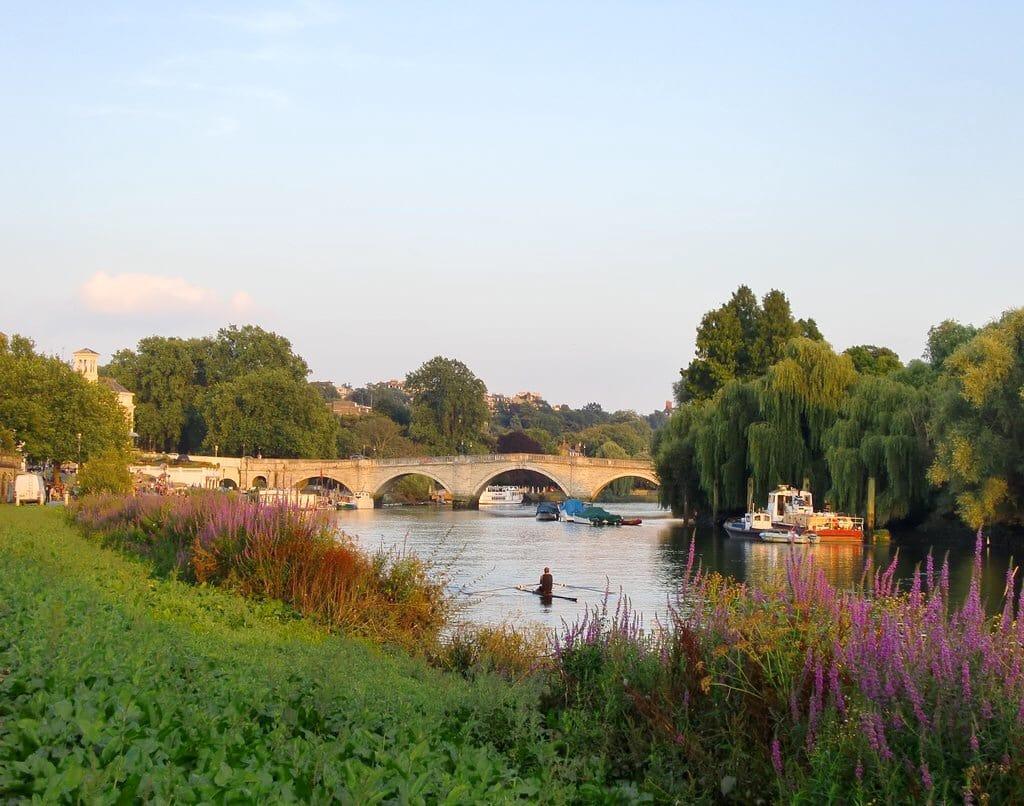 Walking Thames Path - Richmond