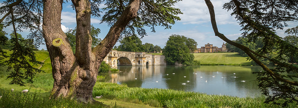 River thames with Blenheim Palace over the bridge
