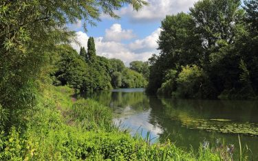 Image of winding canal near Pangbourne, Reading