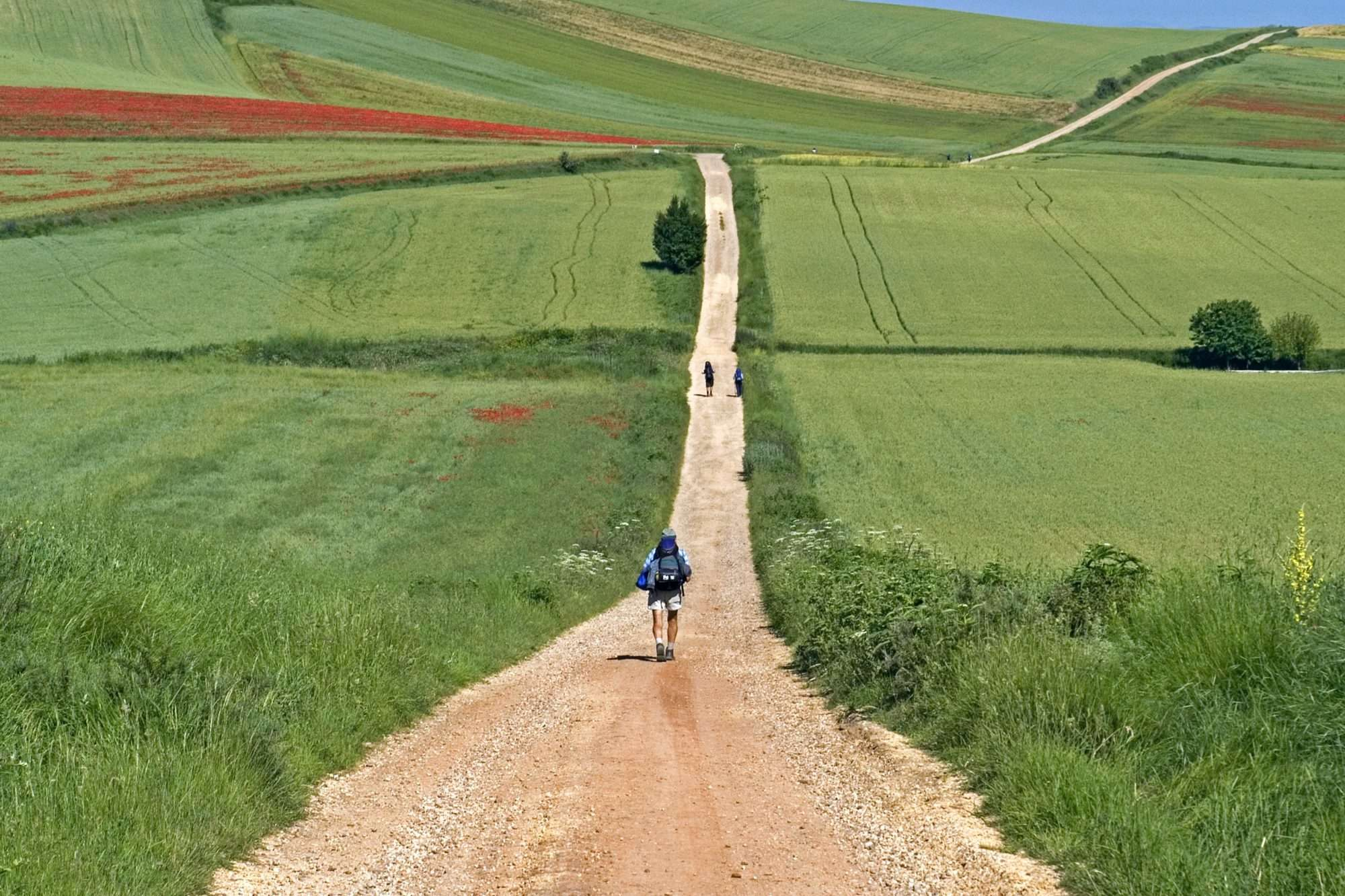 Solitary Walker along the Camino Way, solo walking holidays