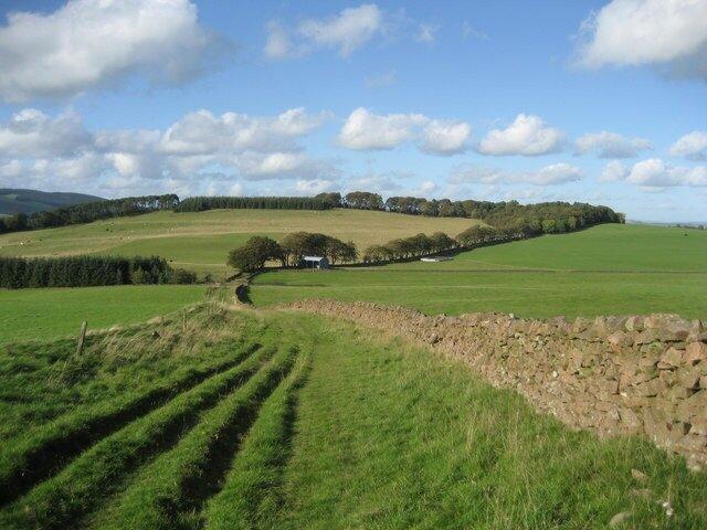 Selkirk-Drove-Road-Border-Abbeys-Way