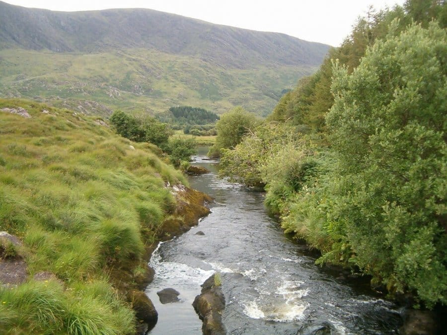 Capall River Kerry Way