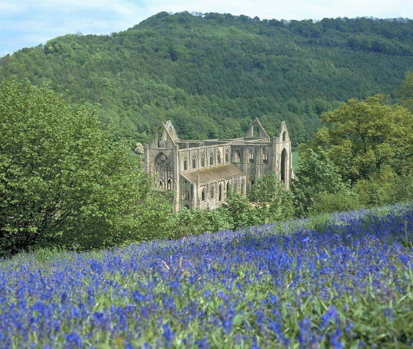 Tintern-Abbey-Wye-Valley-Walk