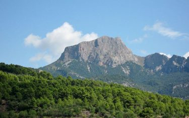 walking-holidays-in-mallorca-puig-major
