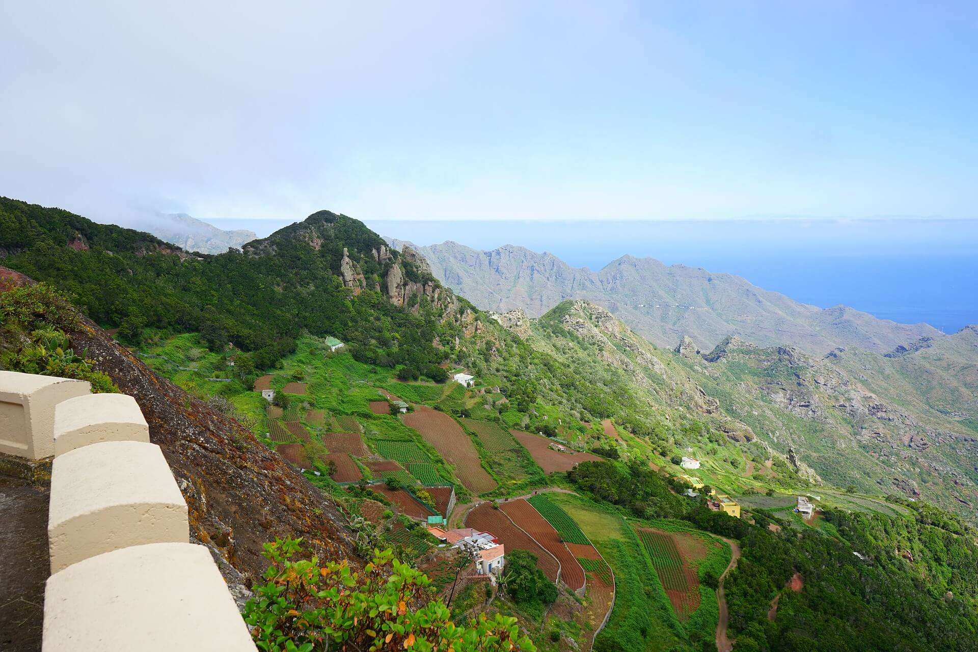 walking-holidays-in-tenerife-anaga-fields