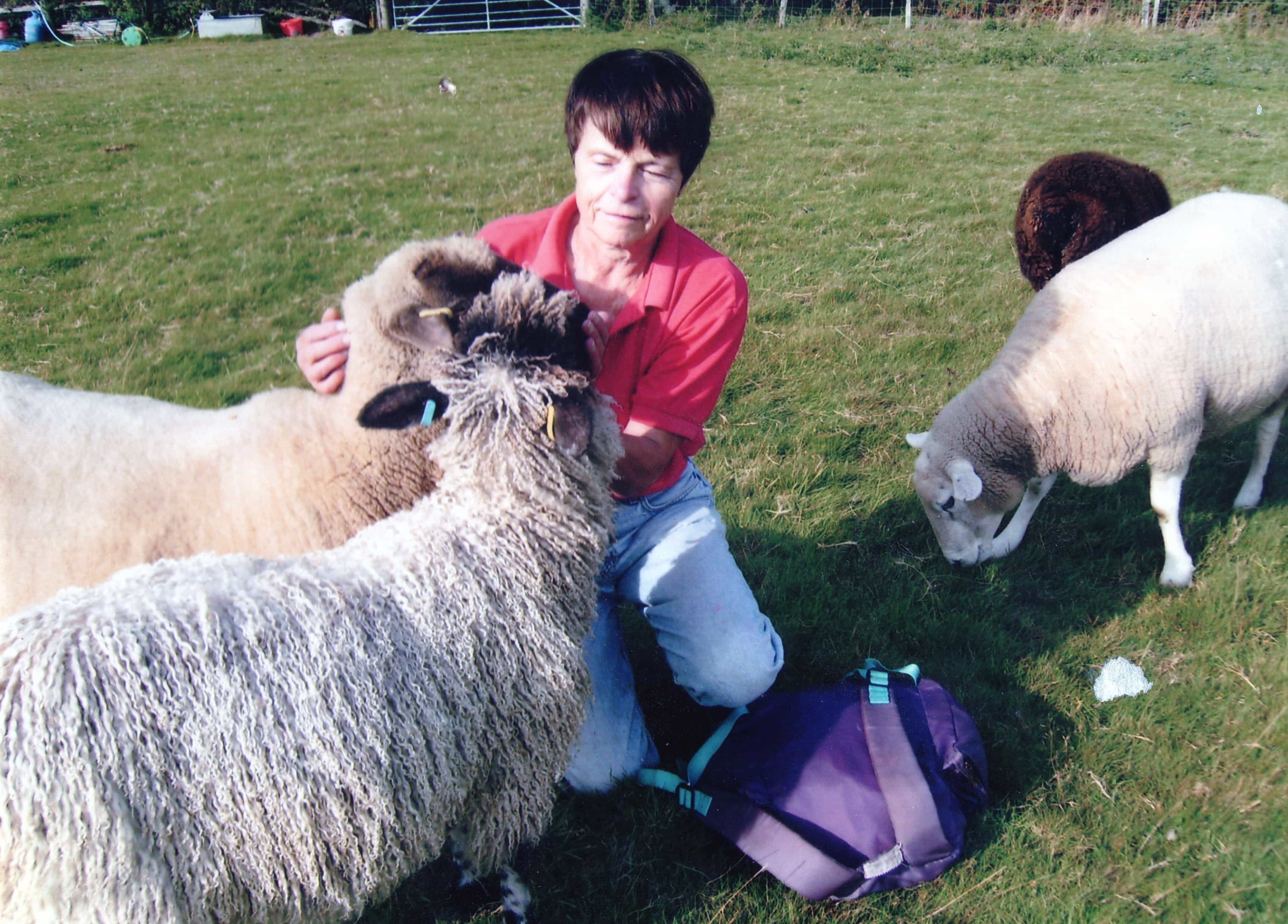 Norma Moody and her sheep