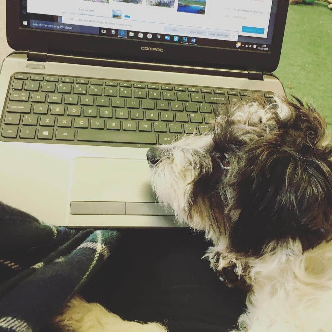 Oarley laptop