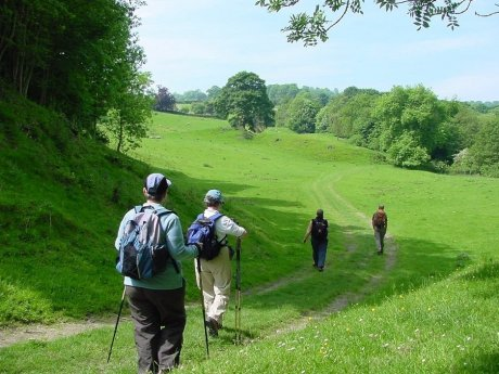 Walkers pacing through a field