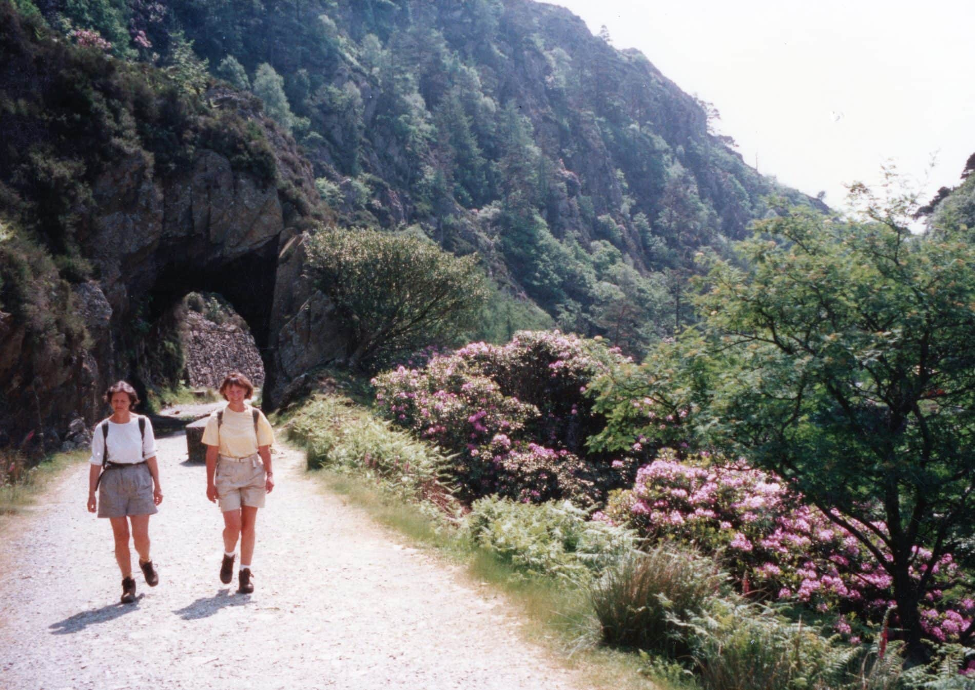 Image of two walkers hiking on a spring day in our early days as a company