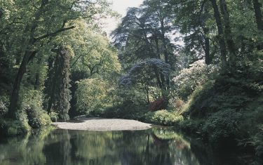 Bodnant Gardens NWCP Holiday Gallery