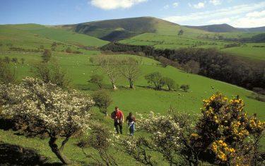 Meirionnydd Walking through fields