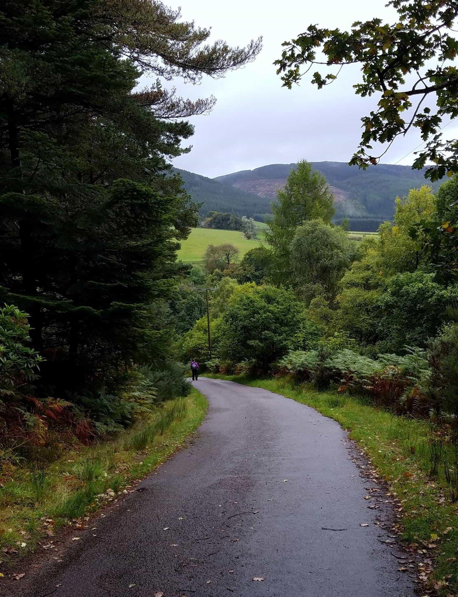 Walking holidays Speyside Way