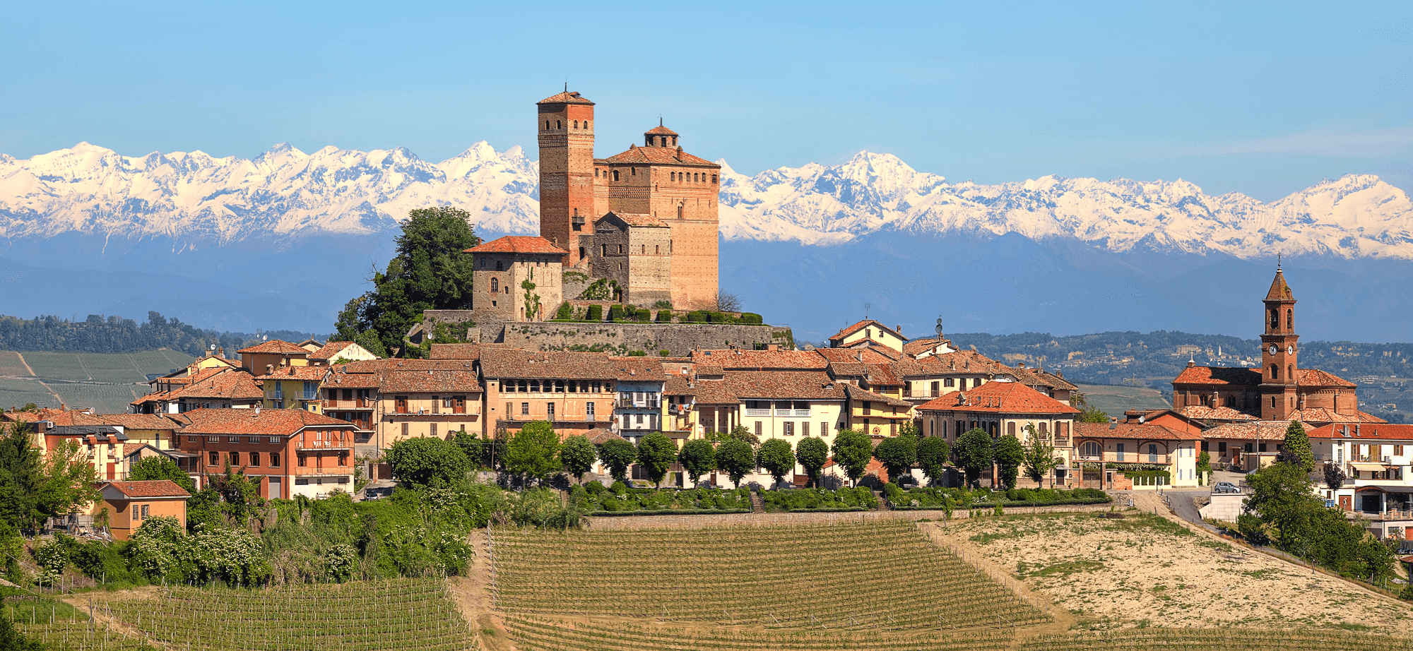 Barolo Piemonte with Alps in Background