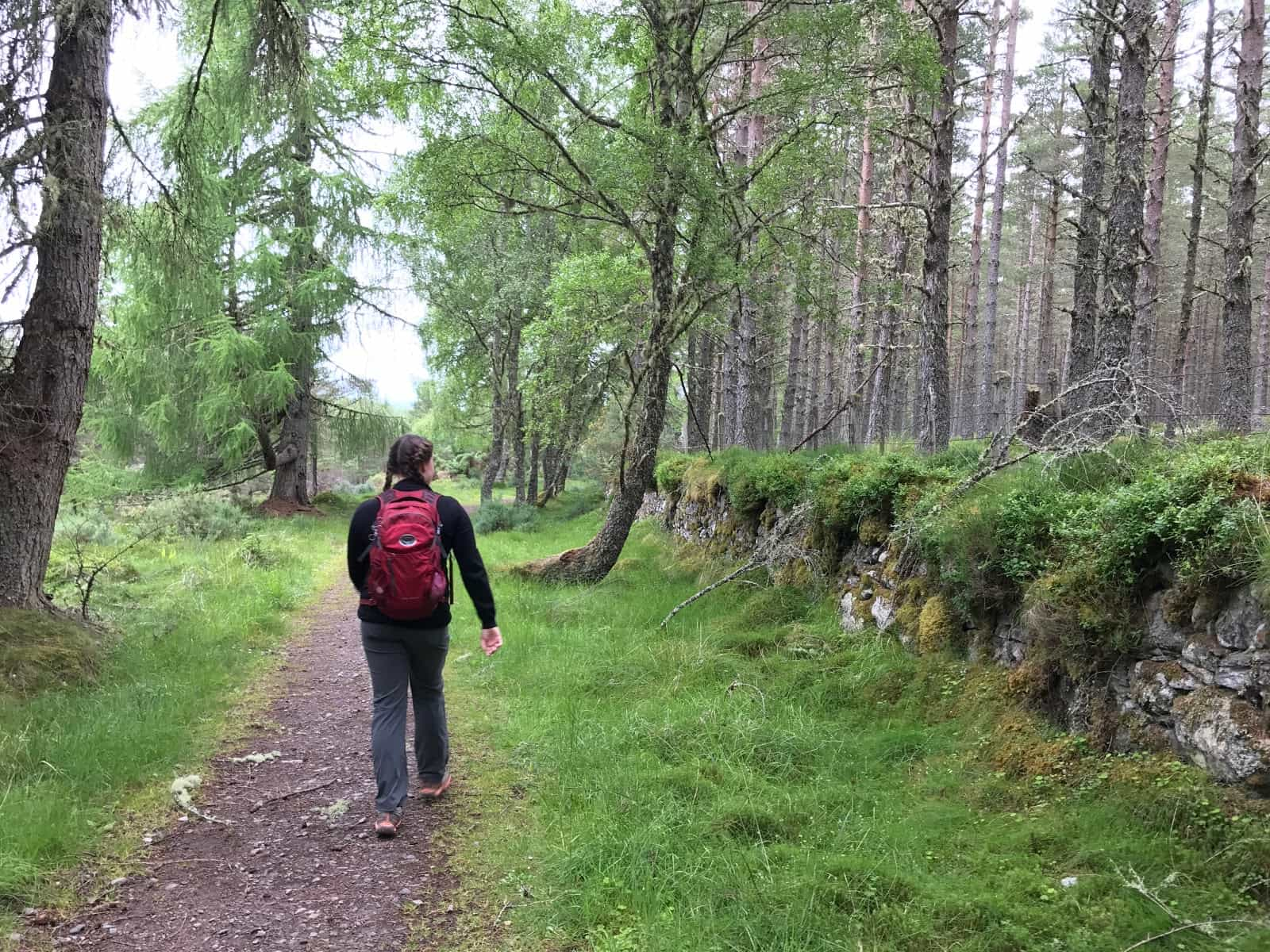 Blackfold to Inverness, Great Glen Way walking Holidays
