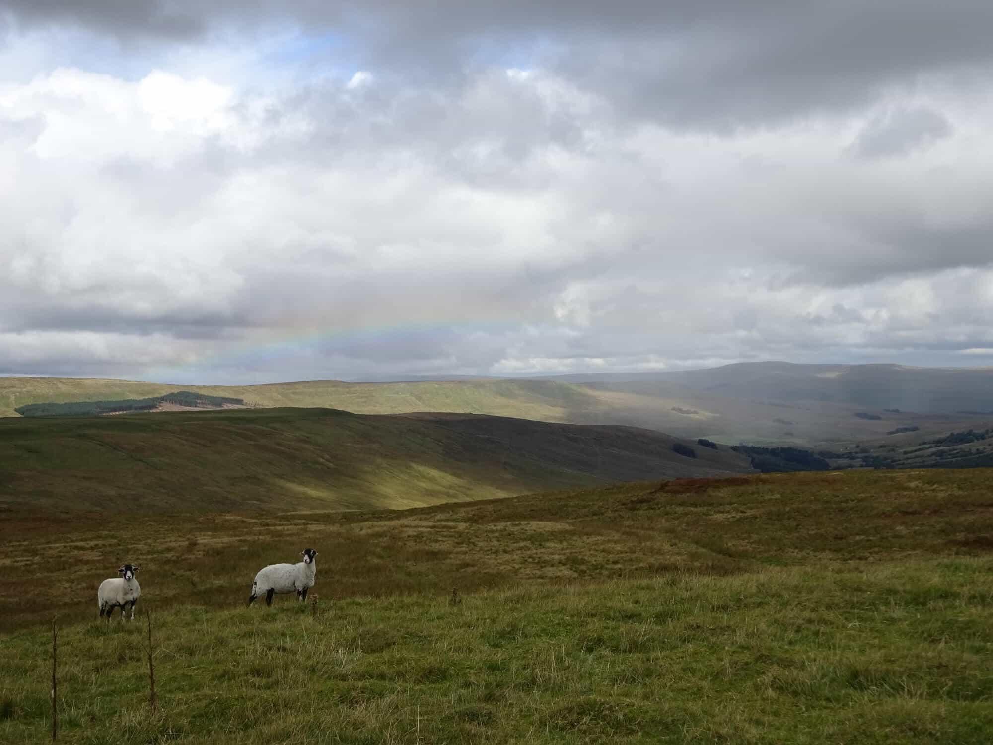 Yorkshire Walking Holidays