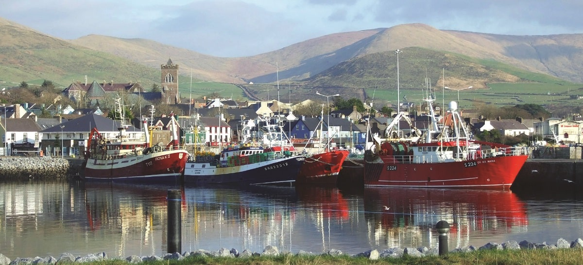 Dingle-Marina