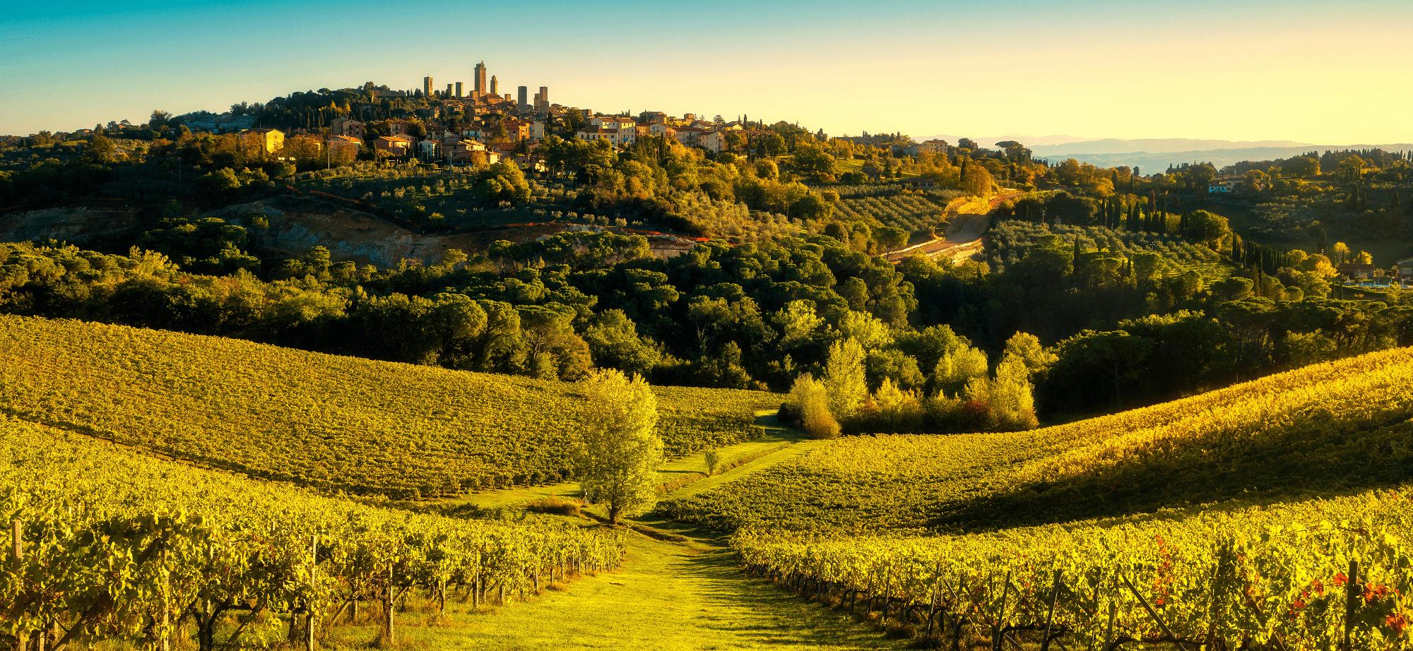 Walking-Holidays-Via-Francigena-Tuscany