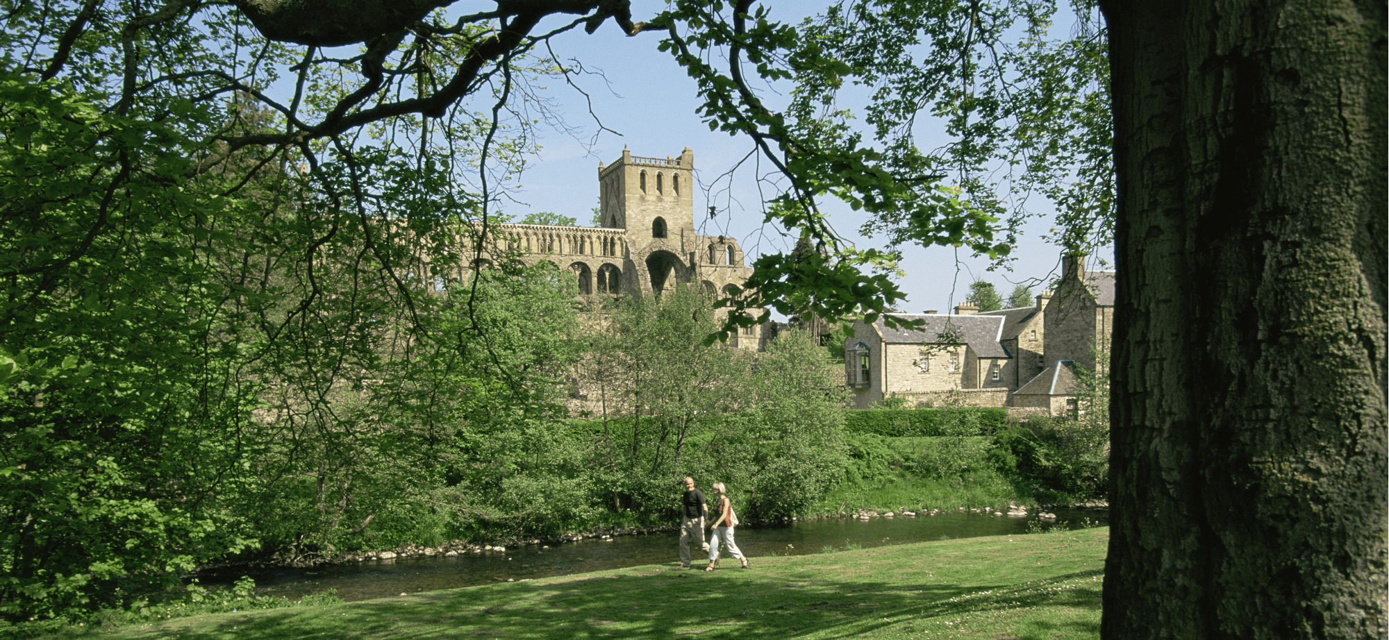 Literature inspired walks along Jedburgh Abbey, Border Abbey Way