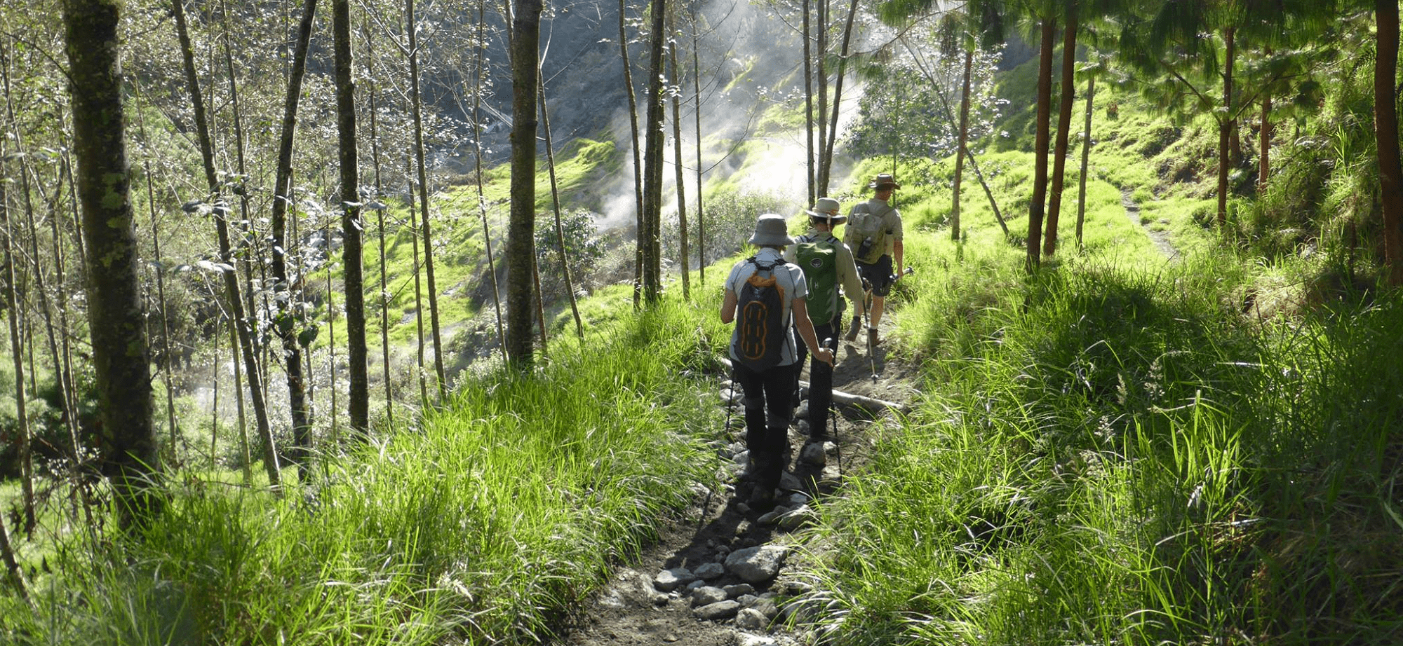 Guided Walking In Colombia