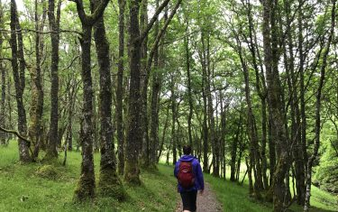 Invermoriston to Drumnadrochit, The Great Glen Way Active holidays