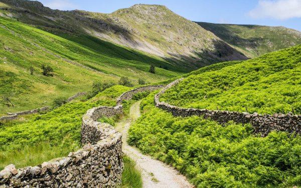 Rural paths leading through Lakeland in Yorkshire, England