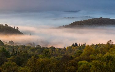 Mist over Aberfoyle