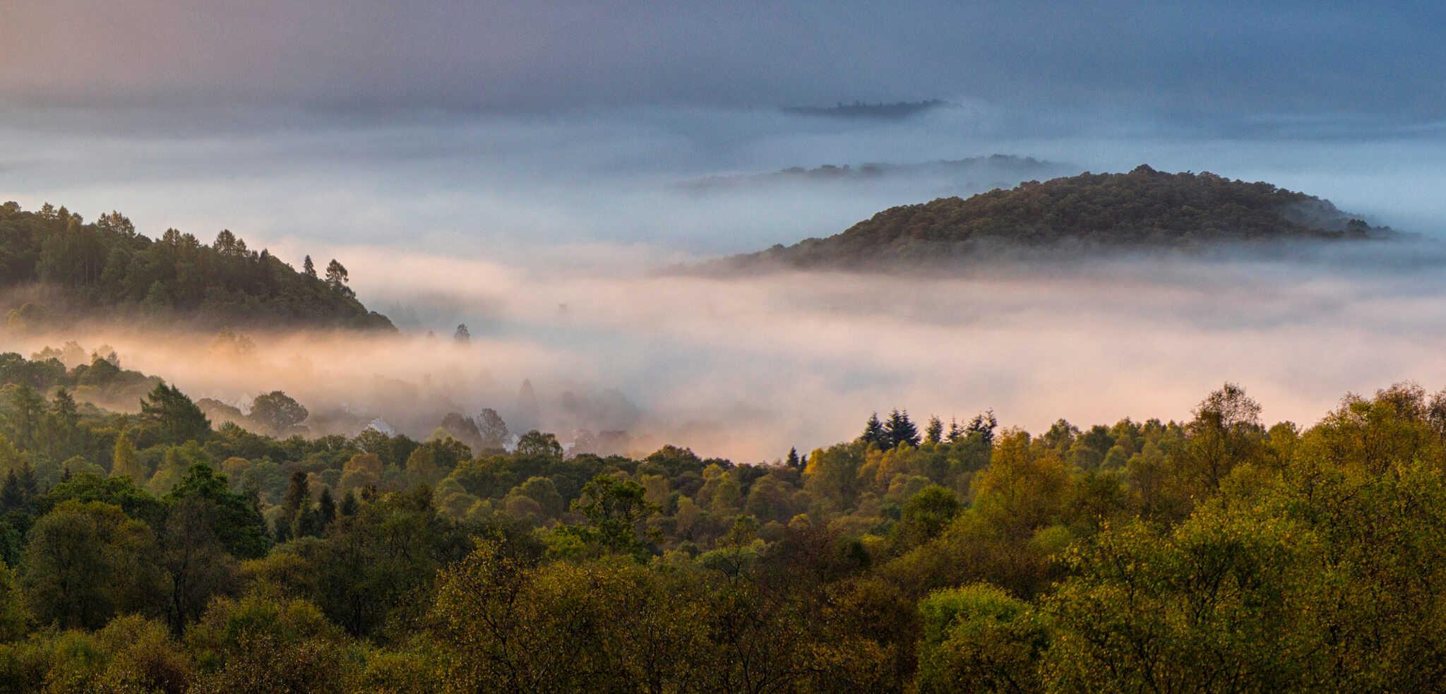 Mist over Aberfoyle