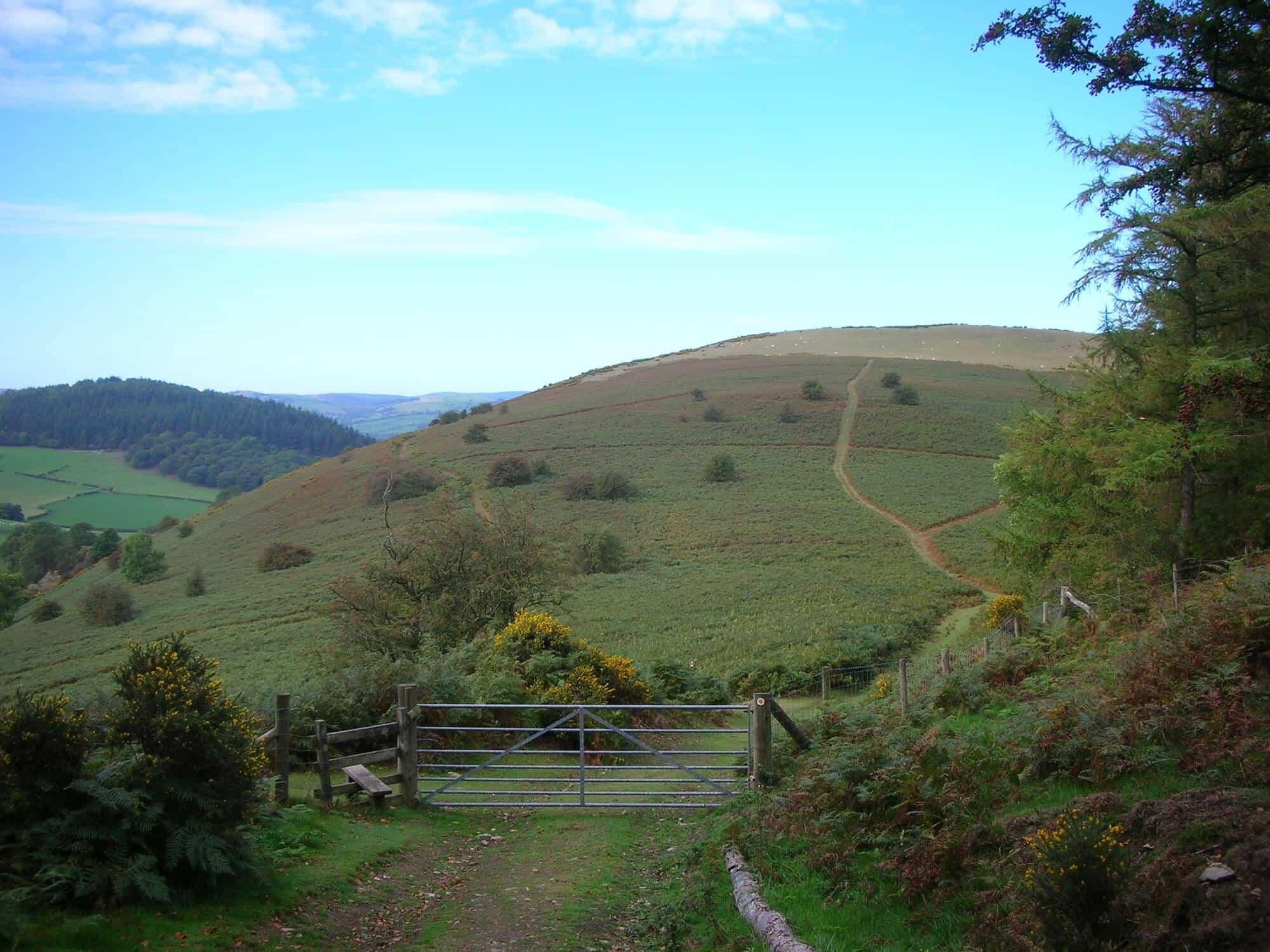 Hiknig Holidays UK Offa's Dyke Path