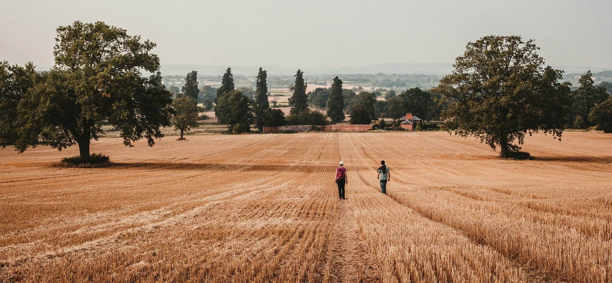 Two Walkers Across Field