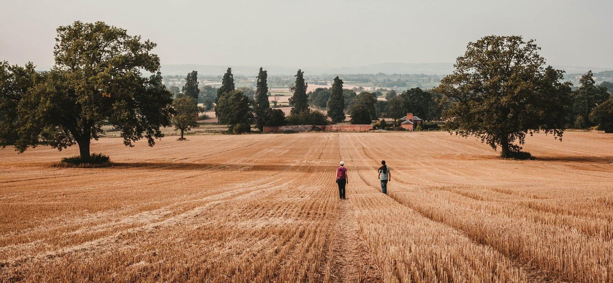 Two Walkers Across Field