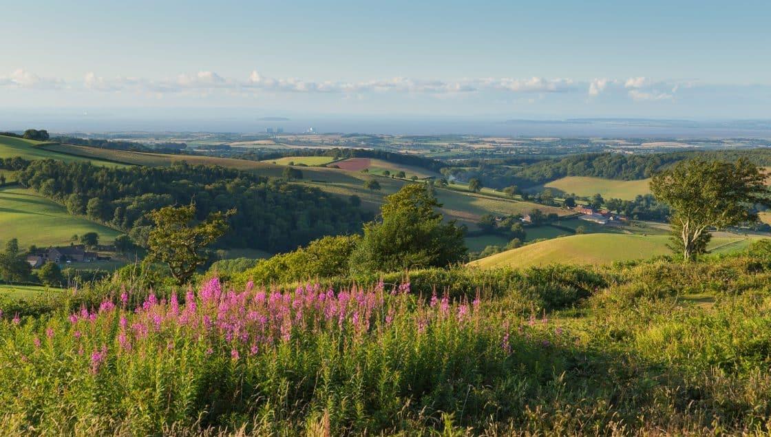 Quantox Hills Somerset