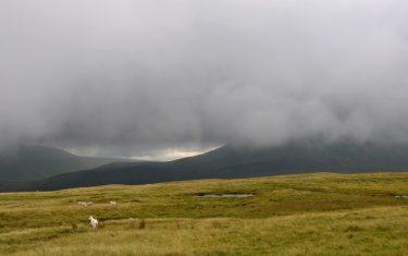 Foggy Welsh landscape