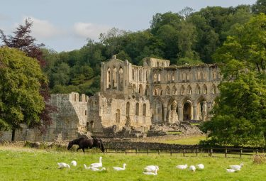 Hiking the Cleveland Way, Rievaulx Abbey, Helmsley to Sutton Bank