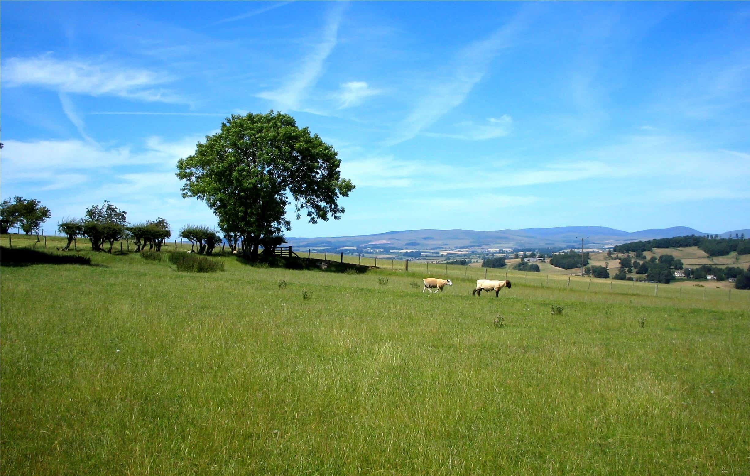 Northumberland countryside walking holidays