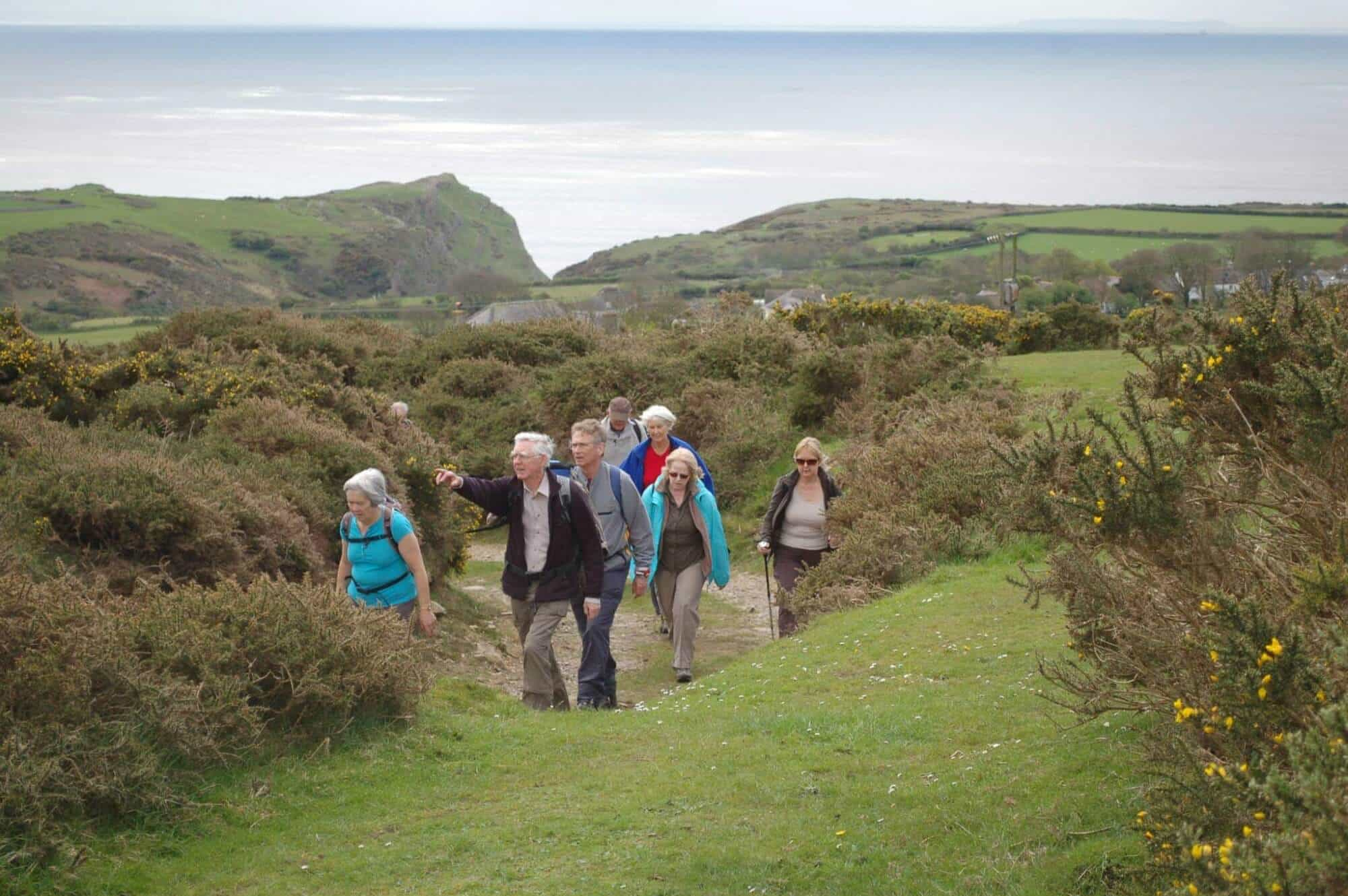 Walking in the Gower
