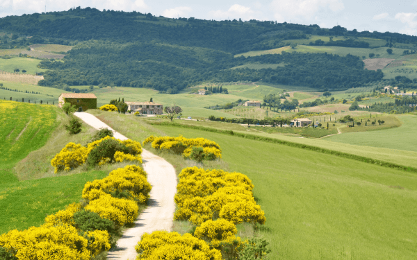 Tuscany Pienza Rural Road Sentiero Toscana
