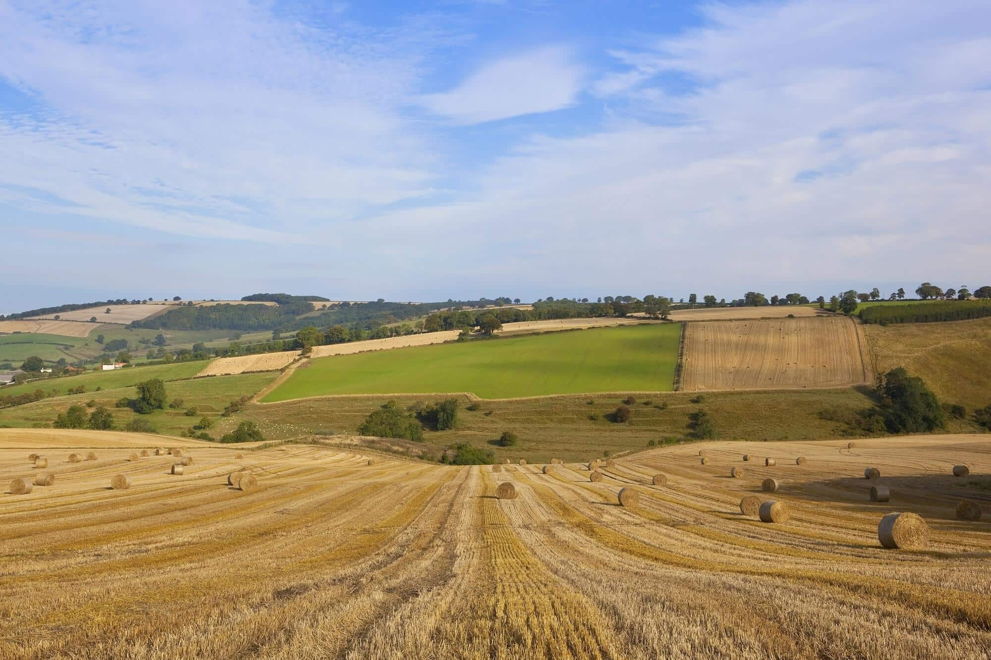 Rolling hills in the wolds