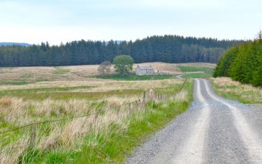 St Oswald's Way Walking Holidays