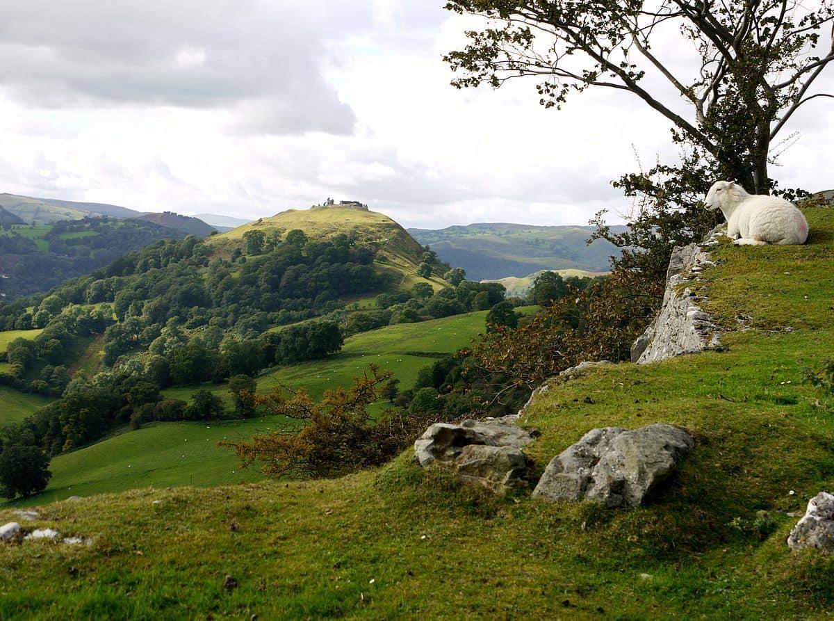 Llangollen Castell Dinas Bran